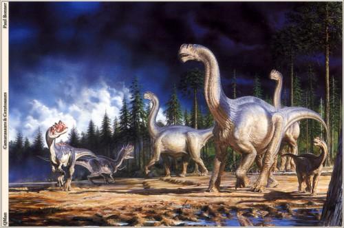 QMan_PB_SP7_1771_Camarasaurs_and_Ceratosaurs.jpg